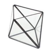 Calisea Crystal Glass Terrarium
