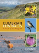 Cumbrian Contrasts