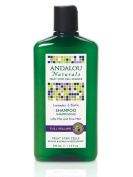 Andalou Lavender and Biotin Full Volume Shampoo 340 ml