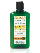 Andalou Argan and Sweet Orange Moisture Rich Shampoo 340 ml