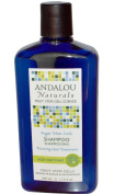 Andalou Age Defying Treatment Shampoo 340 ml