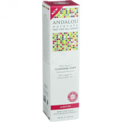 Andalou Naturals, Cleansing Foam, 1000 Roses, Sensitive, 5.5 fl oz