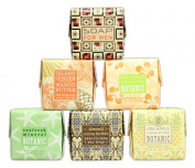 Bundle of 6 Greenwich Bay Trading Co. Soaps - Tropical Island Theme with 1 Soap For Men