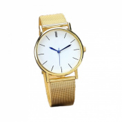 Orangesky Women's Fashion Watch Stainless Steel Band Quartz Wrist Watches