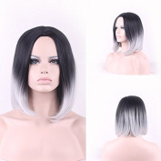 TLT New Popular Short Straight BOB Sexy Stylish Heat Resistant Synthetic Gradual change Hair Wig +A Free Wig CAP for Women Natural As Real Hair(Black with White)BU046E