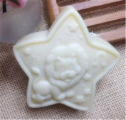 Constellation Soap Mould,Leo