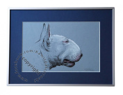 Bullterrier, unique graphics, mixed media, poster, limited edition collection