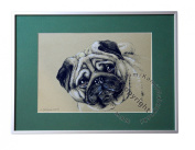 Pug, unique graphics, mixed media, poster, limited edition collection