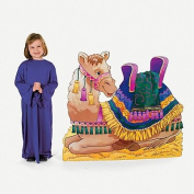 Camel Stand-Up
