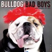 Bulldog Bad Boys
