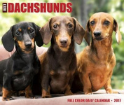 Just Dachshunds