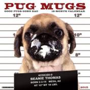 Pug Mugs 2017 Mini Wall Calendar