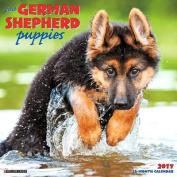 2017 Just German Shepherd Puppies Wall Calendar