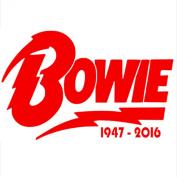 1 x David Bowie Design 4950cm - 5120cm RED-Ziggy Stardust-Car,Van,Campervan Cut Vinyl WINDOW Sticker-Decal Sign-RIP Novelty Car Sticker Decal-Great Present Gift-Universal Fit