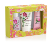 Crabtree & Evelyn Rosewater Little Luxuries 50 ml - Pack of 3
