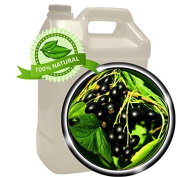 Black Currant Seed Oil - 3.8l (3790ml) - Cold-pressed