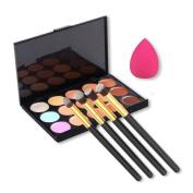 EVERMARKET 15 Colours Contour Face Cream Makeup Concealer Palette + 4pcs Powder Brushes With Free Makeup Sponge Blender