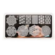 Born Pretty Nail Art Stamp Template Vines Image Plate Lace Chevron BP-L028