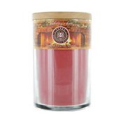 Soy Candle 350ml Tumbler A Festive Blend Of Spruce, Clove, Orange & Peppermint Burns Approximately 30+ Hours