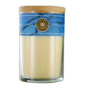 Winter Solstice Soy Candle 350ml Tumbler Burns Approximately 30+ Hours