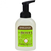 Mrs Meyers Clean Day Apple Foaming Hand Soap, 10 Fluid Ounce -- 6 per case.