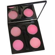 IQ Beauty Iconic Pink Lip Mixx Palette