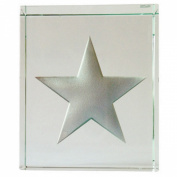 Spaceform Token Silver Metallic Stars 1955
