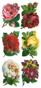 Gwen Floral Labels