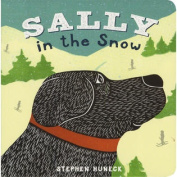 Abrams Books-Sally In The Snow