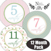 Baby Monthly Stickers - Great for Baby Girl Shower Gift Idea or Photo Prop - Easy to Peel, Stick, Shoot and Remove from Clothing and Onesies - Shabby Chic Design you won't find Anywhere