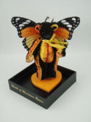 Lesch Flutter Flash Open Butterfly World of Miniature Bears - 1031 - Bear, Height 8 cm