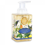 Hummingbird Foaming Hand Soap from FND Promotion by Michel Design Works