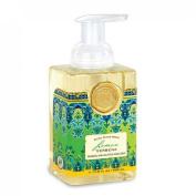 Lemon Verbena Foaming Hand Soap from FND Promotion by Michel Design Works