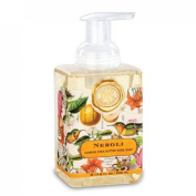 Neroli Foaming Hand Soap from FND Promotion by Michel Design Works