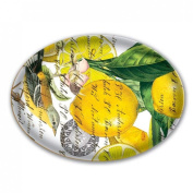 Lemon Basil Glass Soap Dish from FND Promotion by Michel Design Works