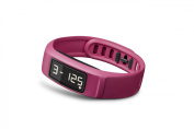 Vivofit 2 Activity Tracker with Move Bar and Alerts