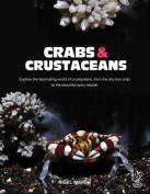 Crabs and Crustaceans