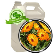 CALENDULA Oil Extract - 3.8l (3790ml) - anti-inflammation, wound healing, dry cracked skin, juvenile acne, sunburn, sprains