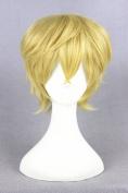 Short Men Boy's Anime Cosplay Wigs Costume Wigs