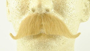 Rubies Colonel Major Moustache BLONDE - no. 2014 - REALISTIC! 100% Human Hair