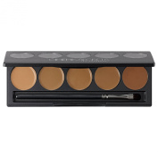 Ultimate Foundation 5-in-1 PRO Palette, 300 SeriesTM