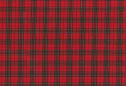 cotton fiocco wide Royal tartan CF-13110 about 145cm width ~ 50cm cut col.2