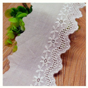 Ivory 3 Yards Retro Cotton Embroidered Lace Trim Dress Lace Sewing Collar Lace 6.4cm Wide