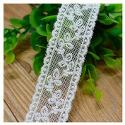 Ivory 5 Yards Fabric Embroidered Mesh Ribbon Lace Trim Dress Lace Craft Lace Sewing Lace 2.5cm Wide