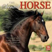 The Cal 2017-Spirited Horse