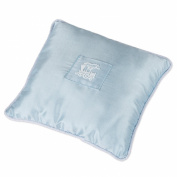 Blue Train Tooth Fairy Pillow with Pocket