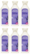 (6 PACK) - Jason Bodycare - Organic Lavender Shampoo | 473ml | 6 PACK BUNDLE