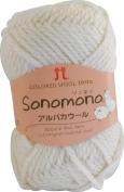 Fall wool Hamanaka itself alpaca wool 40g 60m col.41 5 ball set
