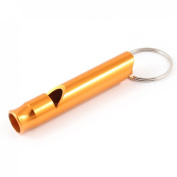 Gold Tone Metal Dog Puppy Training Whistle w Keychain Split Ring