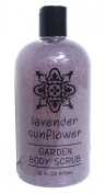 Greenwich Bay Body Scrub Lavender Sunflower, Enriched with Shea Butter and Cocoa Butter, Blended with Exfoliating Loofah and Lavender Buds 470ml